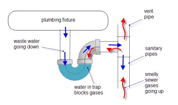 P Trap Diagram Plumbing St Paul Mn