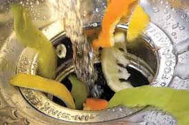 citrus-in-garbage-disposal-st-paul-mn