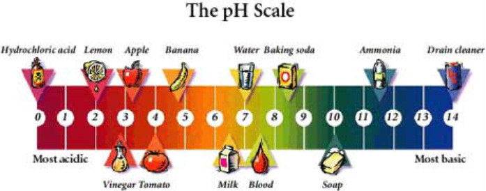 pH Scale Plumbing Saint Paul MN