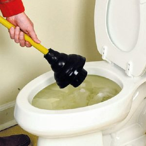 plumbing-saint-paul-mn-toilet-plunging