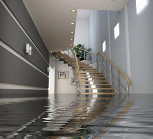 Plumbing-Maplewood-MN-House-Flood
